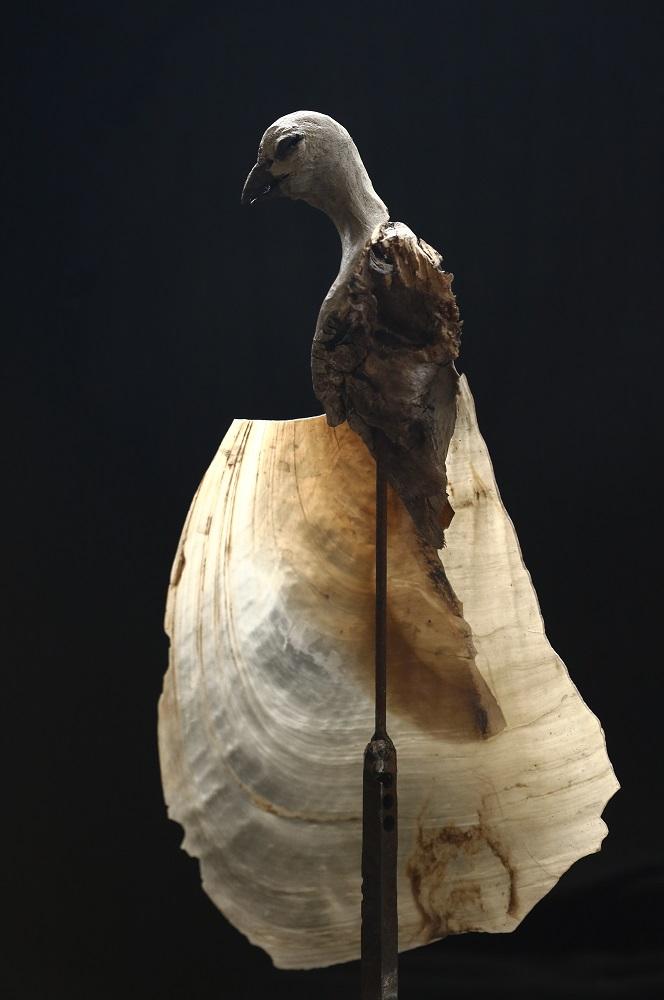http://gallery-su.jp/exhibitions/%E6%B0%B4%E7%94%B0%E5%85%B8%E5%AF%BF%E5%B1%952019%20DM.jpg