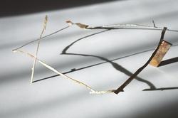 秋野ちひろ展2020年DM.jpg
